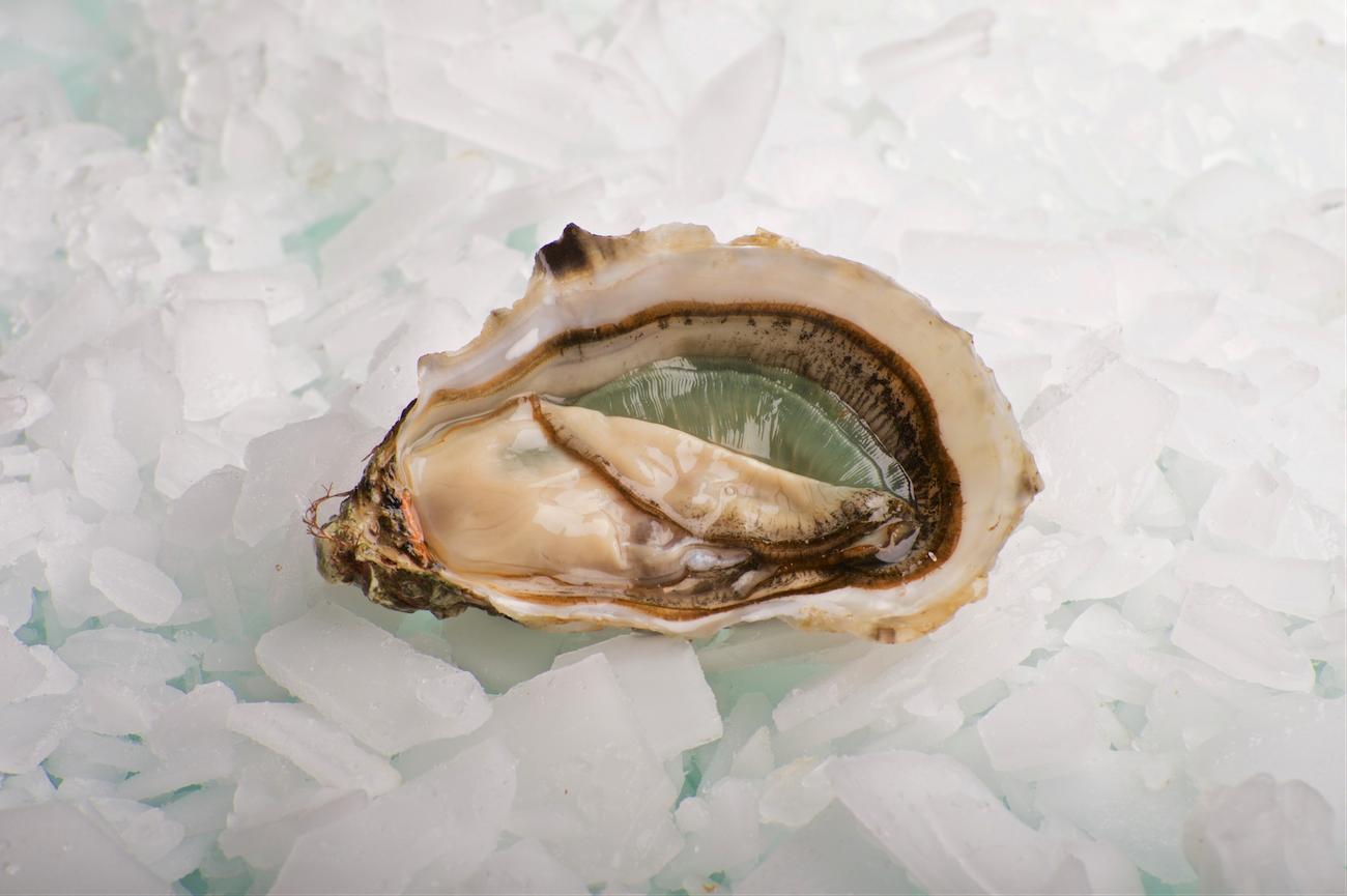 Un viaje de amor y ostras por San Valentín