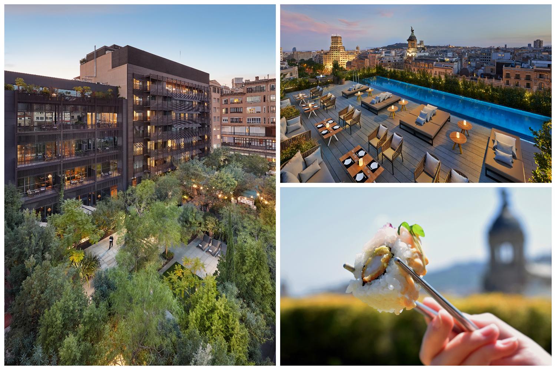Terrat y Mimosa, las terrazas en las que disfrutar de gastronomía y ocio en el centro de la ciudad